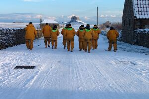 Seahouses crewmembers walk back to their lifeboat in the snow